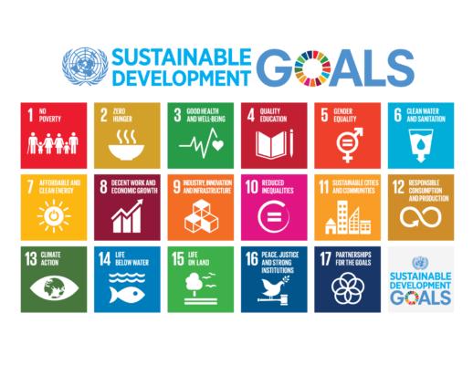 E_2016_SDG_Poster_all_sizes_with_UN_emblem_Letter