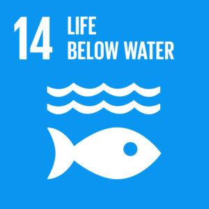 E_SDG goals_icons-individual-cmyk-14