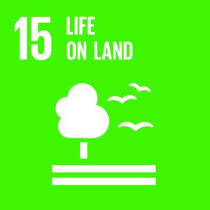 E_SDG goals_icons-individual-cmyk-15